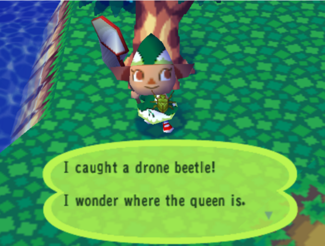 File:Drone Beetle.png