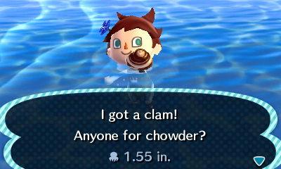 File:HNI 0084 clam.jpg
