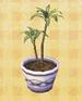 File:Corn-plant.jpg