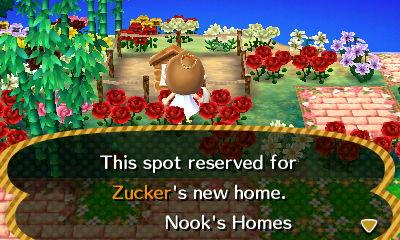 File:Zucker ACNL Home Setup.jpg