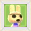 CocoPicACNL
