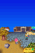 Animal Crossing - Wild World 57 1280