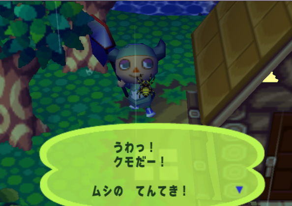 File:Spider (Animal Forest e+ caught)2.PNG