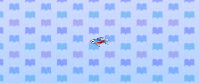 File:Neon tetra.png