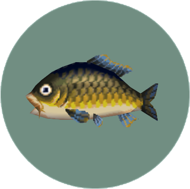 File:Carp (City Folk).png