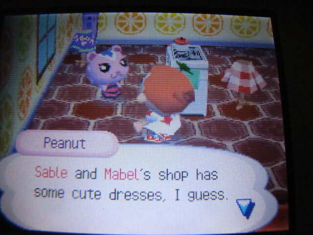 File:Peanut.JPG