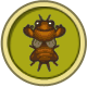 Mole Cricket (City Folk)