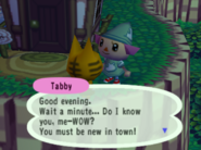 Meeting Tabby
