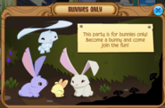 Bunnypartynote