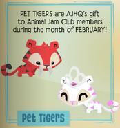 Jamaa-Journal Vol-080 Pet-Tigers