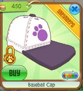 Baseball cap5