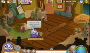 Animal Jam Where Is Pillow Room : Pillow Room Animal Jam Wiki Fandom powered by Wikia