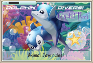 JAG Crystal Reef Dolphin Divers