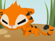Tigers (Pet)