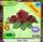 Shop Rose-Tiara Red