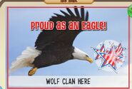 Proud as an Eagle JAG
