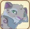 Snowleopard profile