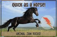 Horsejag
