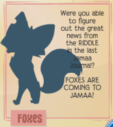 Foxes jamaa journal