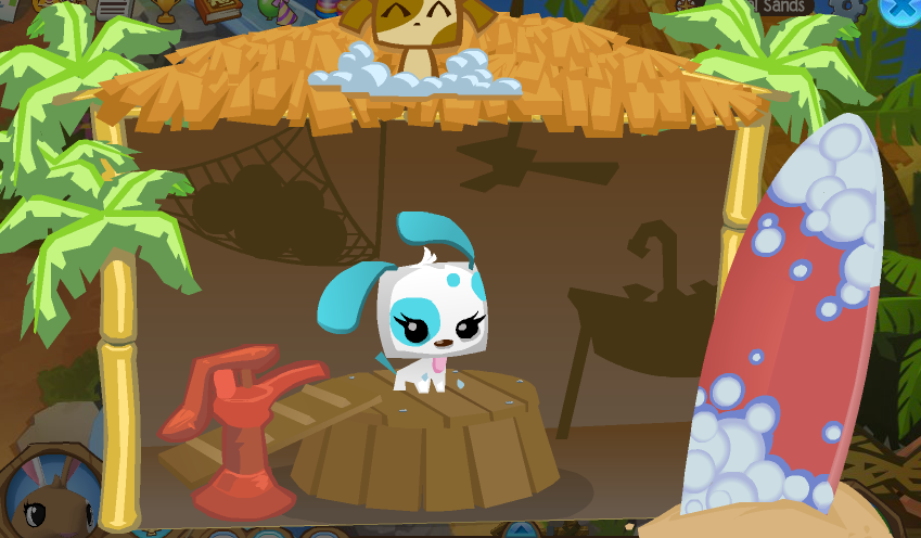 Pet wash animal jam wiki fandom powered by wikia - Animaljam wiki ...