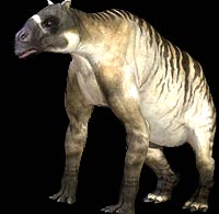 Ancylotherium | Animal Database | Fandom powered by Wikia