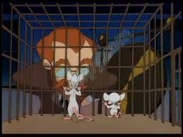Palkov's Mice