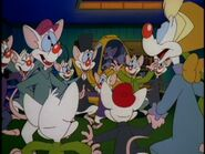 When Mice Ruled the Earth (3)