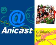 Anicast bumper 2