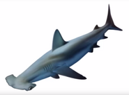 Hammerhead shark from escape book 15 cover morph