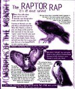 Animorphs Alliance flash issue 5 morph of the month raptors