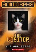 The Visitor Cover 2011