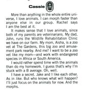 Cassie animorphs alliance handbook bio
