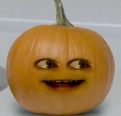 Midget Pumpkin