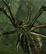 Giantspider--big--2