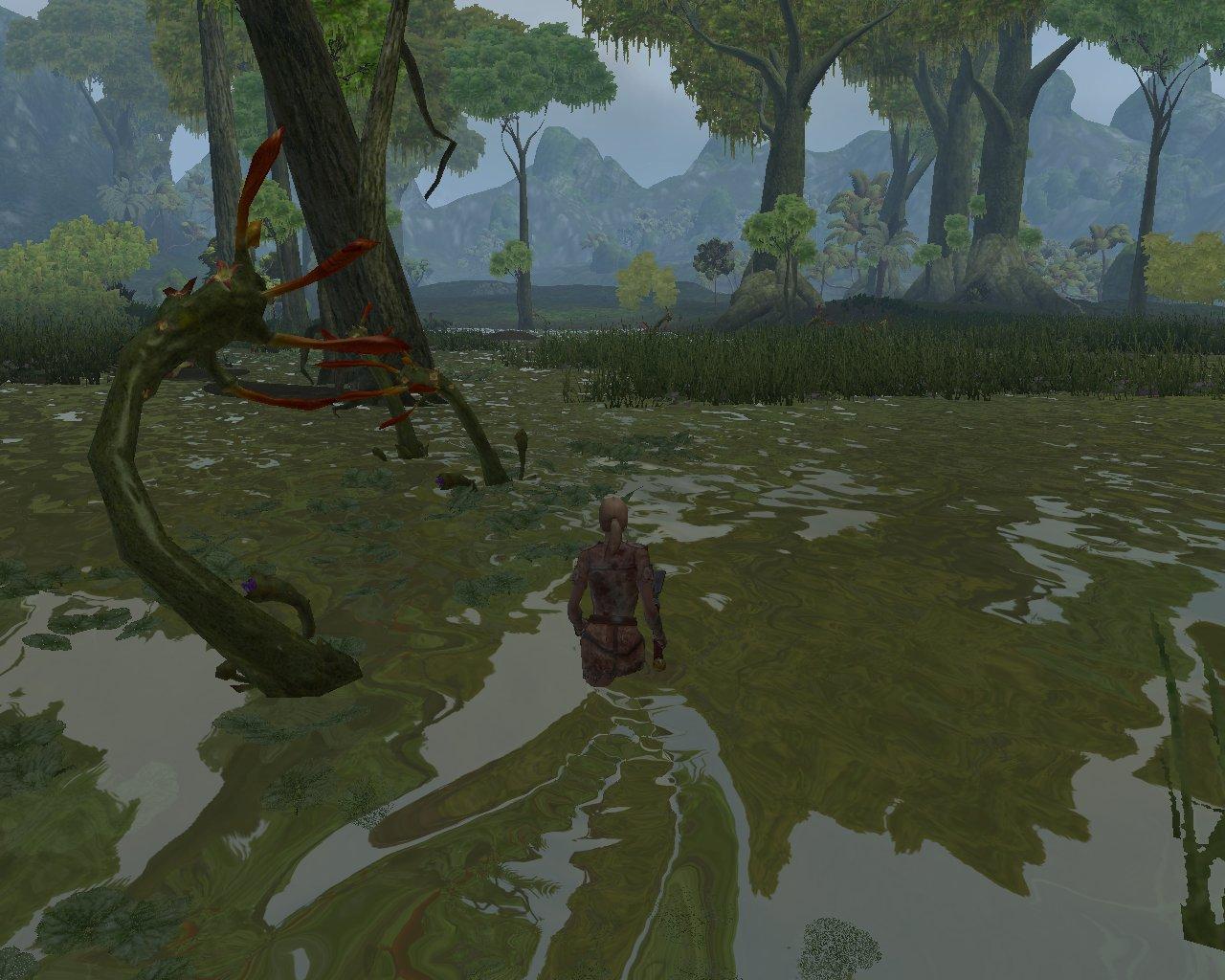 Purple Lotus Swamp Aocwiki Fandom Powered By Wikia