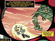 Shadow Fights Black Doom
