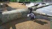 ARK-Dodo Screenshot 004