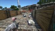 ARK-Dodo Screenshot 003