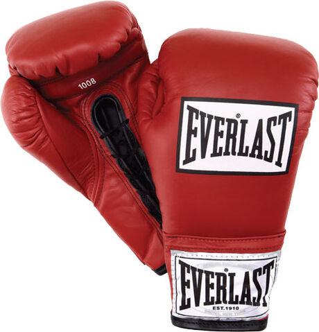 File:Everlast-boxing-international-professional-fight-gloves.jpg