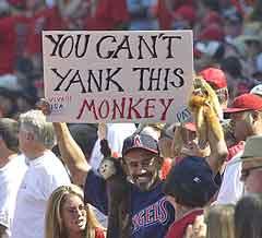 Yankmonkey