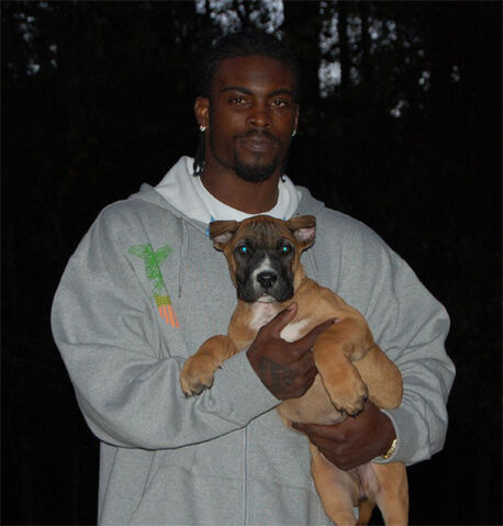 File:Michael Vick Dog.jpg