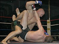 File:1210494208 Ultimate fighting.jpg