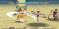 Shadow Punishment