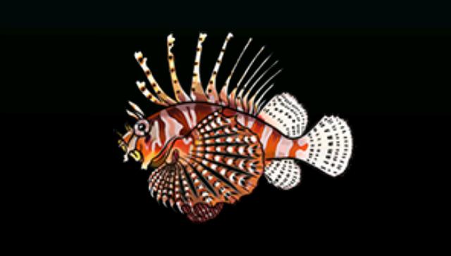 File:LionfishACP.png