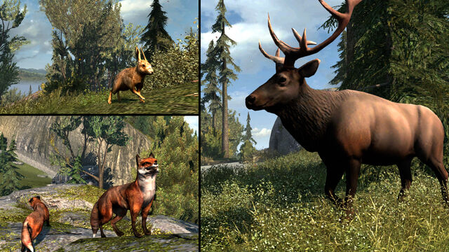 File:Animals to hunt in AC3.jpg