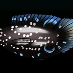 Glasseye Snapper - Rarity: Rare, Size: Medium