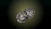 ACP Treasure Coins