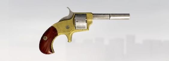 File:ACS Pocket Pistol.jpg
