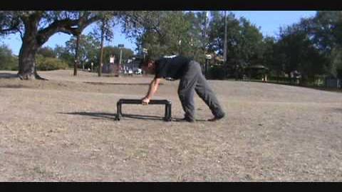 Parallette training
