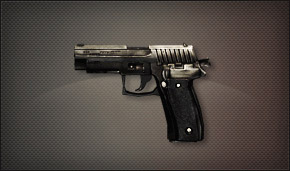 File:Img weapons secondary p226.jpg